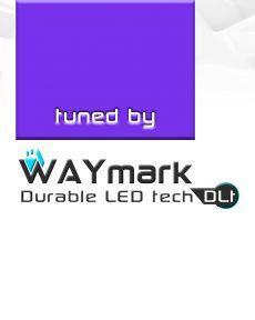 Настроены WAYmark